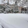 Maltempo: neve a Pescara, Molise, Marche e Puglia19