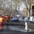 """Roma, Aduc: """"Guano su strada potrebbe provocare tubercolosi""""3"""
