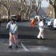 """Roma, Aduc: """"Guano su strada potrebbe provocare tubercolosi""""2"""