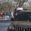 """Roma, Aduc: """"Guano su strada potrebbe provocare tubercolosi""""8"""