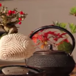 YOUTUBE Bonsai che fluttua come un pianeta: è l'Air Bonsai 5