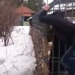 YOUTUBE Ubriaco mette la mano nella gabbia e l'orso... 8