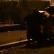 """YOUTUBE Allarme topi a Roma: """"Due per abitante"""" 5"""