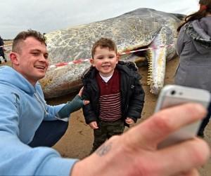 Guarda la versione ingrandita di Selfie accanto a balene spiaggiate, nuova moda VIDEO, FOTO