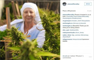 """Guarda la versione ingrandita di Usa, """"suore"""" new age coltivano marijuana in garage FOTO"""