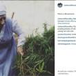 Usa, suore new age coltivano marijuana in garage6