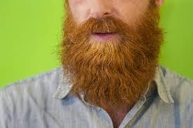 Barba, se pulita fa da...antibiotico