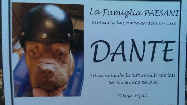 Manifesti funebri per il cane Dante. FOTO. Polemica a Rimini