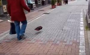Cane invisibile passeggia in strada in Giappone