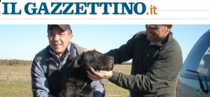 Cane buttato in pozzo e murato vivo: salvato da 2 cacciatori