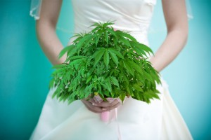Marijuana & Matrimoni: affaroni al Colorado Cannabis Expo