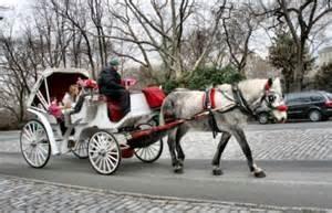 Una carrozzella a New York
