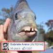 commenti-memorabili-facebook (26)