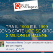 commenti-memorabili-facebook (4)