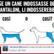 commenti-memorabili-facebook (66)