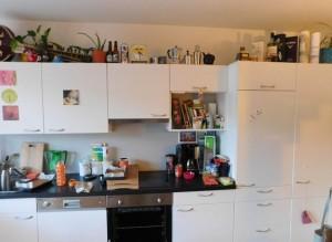 Gatto nella cucina dov'è nascosto? Nuovo tormentone web