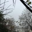 Nebbia Roma: Capitale si sveglia32
