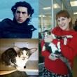 Kylo Ren versione gatto. Padrona: Uguali, venga a conoscerlo