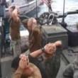 YOUTUBE Marines inginocchiati davanti a pasdaran Iran