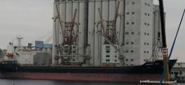 Savona, 22 marittimi bloccati su nave sequestrata per debiti