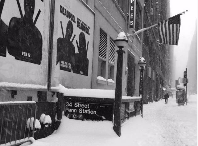 New York sotto la neve (foto Paola Casali)