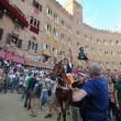 Palio di Siena, no ad Elisabetta: non andrà a festa regina