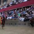Palio di Siena, no ad Elisabetta: non andrà a festa regina 5
