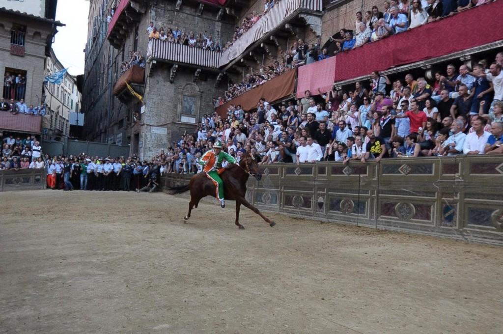 Palio di Siena, no ad Elisabetta: non andrà a festa regina 9