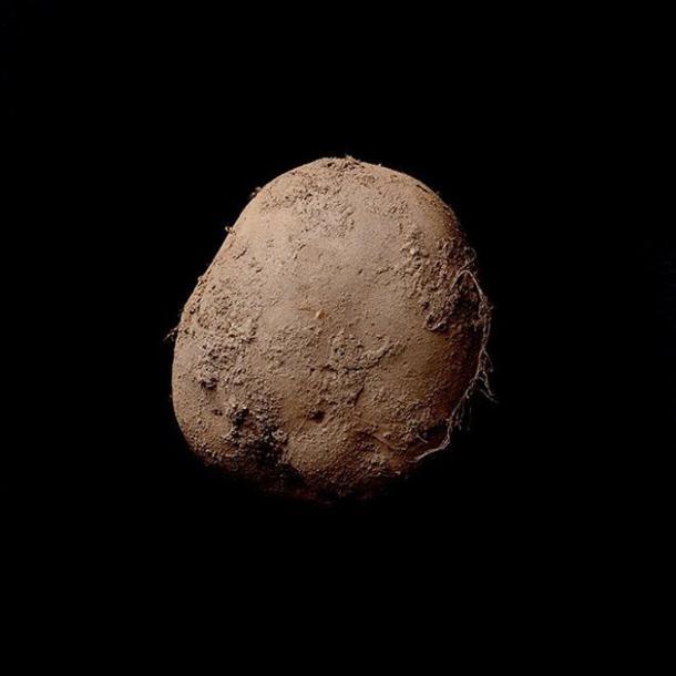 Kevin Abosch fotografo star: ritratto patata vale 1 mln euro2