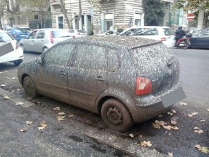Roma bloccata dal guano, hanno pulito ma male e la pioggia..