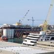 Costa Concordia, 4 anni fa naufragio al Giglio FOTO VIDEO 7