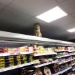 Olly, il gatto che da sei anni vive in un supermercato5