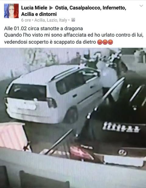Roma, ladro entra in giardino e viene ripreso. FOTO online 07