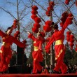 Capodanno cinese, addio Capra: arriva l'anno della Scimmia6