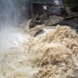 Maltempo, allerta piena fiumi: a rischio Secchia e Panaro