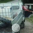Cuccioli cane nel sacco di plastica lanciati da furgone6