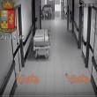 Finto medico rubava in ospedale a Sesto San Giovanni5