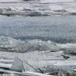 Lastre ghiaccio sul lago mosse dal vento3
