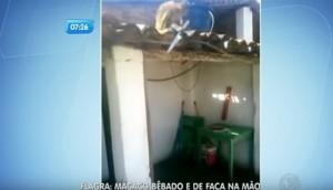 Macaco ubriaco terrorizza clienti bar col machete4