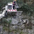 Pompieri salvano capra bloccata nella gola di montagna3