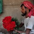 San Valentino: 1 su 5 regala fiori7