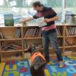 Video YouTube - Fernie, il cane che sa leggere 4