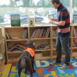 Video YouTube - Fernie, il cane che sa leggere 5