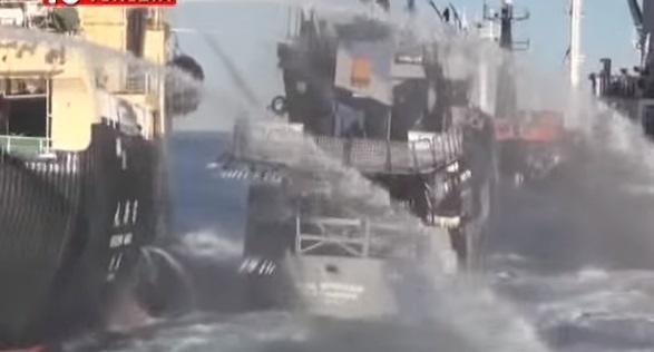Sea Sheperd, nave si incaglia bassa marea a Venezia3