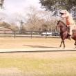 Tirannosauro a cavallo: VIDEO demenziale3