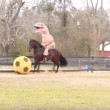 Tirannosauro a cavallo: VIDEO demenziale2