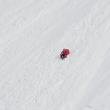 YOUTUBE Cade da sci e scivola per 300 metra su neve, illesa5