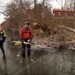 Cinghiali bloccati ghiaccio salvati da pattinatori5