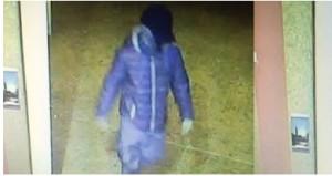 Guarda la versione ingrandita di Azzano Decimo, sindaco su Facebook lancia caccia a ladro