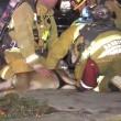 Cane soccorso dai pompieri con maschera ossigeno3